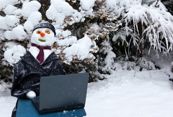 Snowman Working On Laptop